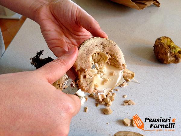 eliminare la parte spugnosa sotto la cappella del fungo