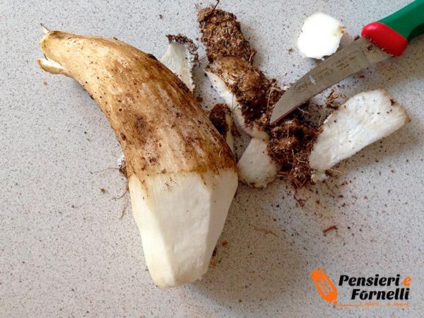 tagliare il gambo dei funghi porcini per eliminare i residui di terra dalla base del gambo
